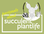 British cactii and succulent society logo